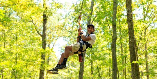 Tree Time Adventures